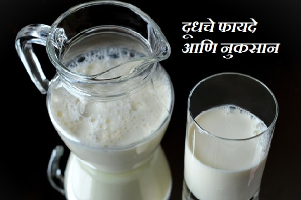 Advantage and Disadvantages of Milk