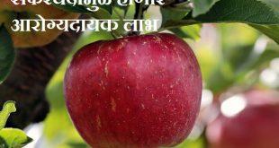 Benefits Of Apple