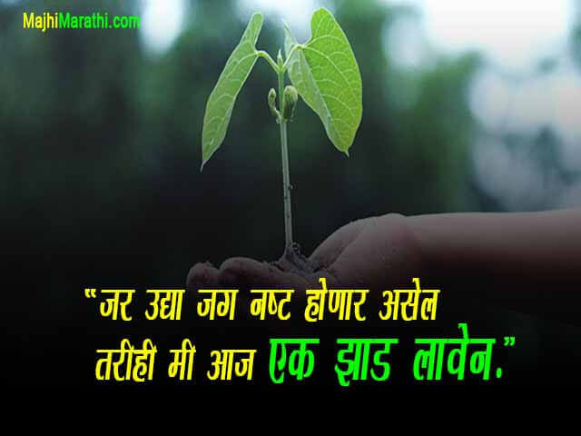 Quotes on Nature
