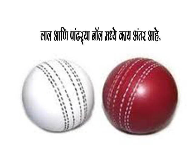 Difference Between White and Red Cricket Ball