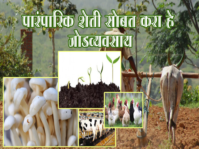 Agriculture Business Ideas in Marathi